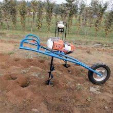 手提式栽树挖坑机 启航园林植树大功率双钻头挖坑机 单人操作挖洞机
