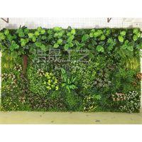 浩晟 新款仿真植物墙 塑料草坪 人造草皮墙 美化装饰软装工程可来图定制
