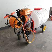 家用消毒喷雾打药机 科博机械手推式高压汽油打药车 园林农药喷洒机