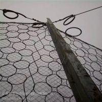厂家长期销售 树根保护勾花网 养殖用围栏网 喷塑铁极丝勾花网