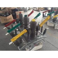 ZW32-12GG/630-20电分电合,双隔离双控制器带电源PT