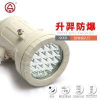 防爆视孔灯 反应釜视镜灯 升羿防爆LED灯 探路灯 5W探照灯 灯具生产厂家