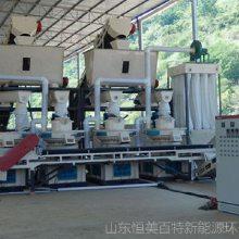 木屑制碳机,生物质燃料颗粒机,节能环保立式环模颗粒机