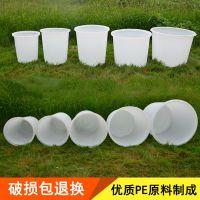 江汉区加厚500L塑料圆桶 水产桶 鱼苗孵化桶 腌制发酵桶