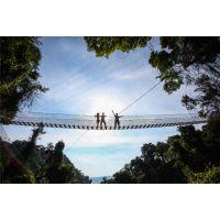 亚热带雨林空中花园走廊