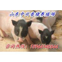 http://himg.china.cn/1/4_29_235534_600_400.jpg