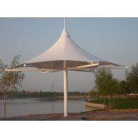 设计安装张拉膜结构表演舞台动物园膜结构膜伞PVDF足球场体育看台