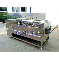 菠菜清洗机 山东广大QX-2200-6型蔬菜清洗机