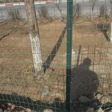 养鸡铁网 养鸡网多少钱一米 鸽子铁丝网