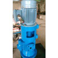 厂家直销 SNS40-46 立式三螺杆泵 安徽永骏泵阀 三螺杆泵厂家