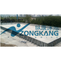 兴化市纵康50*25钢结构标准大型泳池_广州纵康泳池水处理设备_温泉水疗设备