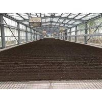 供应煜林枫太阳能污泥干化系统设备