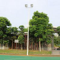 灯杆灯柱厂价批发 广州8米安装方法 镀锌球场灯杆