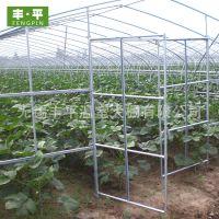 厂家批发温室连栋蔬菜西瓜大棚 热镀锌钢管骨架种植西瓜大棚定制
