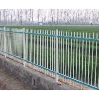 供应锌钢护栏,市政护栏