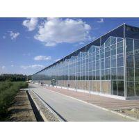 山东烟台智能玻璃育苗温室大棚4.5米、天沟排水、顶部8MM阳光板型建造公司