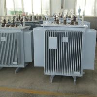 S11-630KVA油浸式变压器行情 泰鑫油变型号