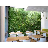 东初仿真植物墙 形象墙 人造植物墙 假墙 园林景观绿化