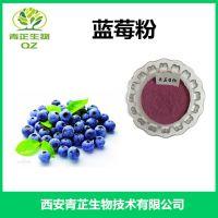 蓝莓粉 厂家现货 青芷生物