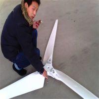 晟成风光互补2000W/瓦家用风力发电机 建设新农村