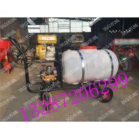 小型农用植保机械喷雾器 润众 园林高压泵打药机