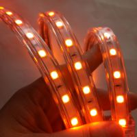 植物生长灯系列琥珀光 5050-60D 深圳厂家直销