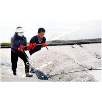 河北地区工业盐厂家直销/工业级融雪剂***新批发价格