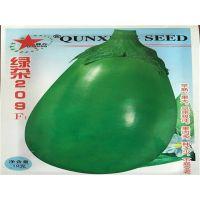 常年批发绿长茄种子 白茄种子 白长茄种子 紫茄子种子 发芽率高