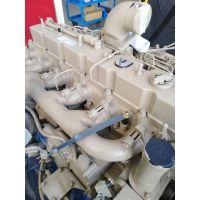 康明斯6C_附件驱动齿轮3680691_发动机_四配套