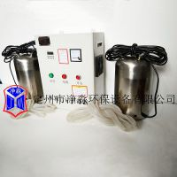 定州净淼现货供应喷泉消毒杀菌臭氧发生器WTS-2B(一控二)