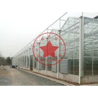 智能温室连栋玻璃大棚—瀚洋生态温室工程建造