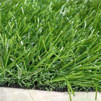 40mm加密加厚柔软幼儿园人造草坪【时宽】休闲场所地面铺设假草坪