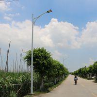江苏高速公路灯杆6米 led投光灯路灯杆直销 led路灯厂家供应