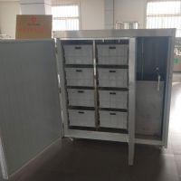 凯瑞特全自动豆芽机现货供应 绿豆芽发芽机 箱式温控豆芽机技术