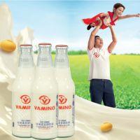 泰国进口瓶装维他奶豆奶 原味VAMINO/哇米诺豆奶饮料 常温豆奶
