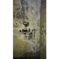 工程师B9混凝土界面剂,防止混凝土空鼓
