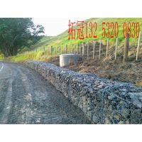 园林绿化防护网,环保优选绿格网,绿格石笼网绿色施工方案,安平拓冠丝网