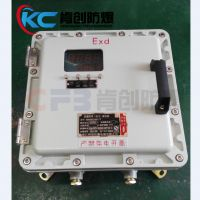 BXM(D)防爆仪表控制箱 防爆温控箱 数显表显示箱 PLC电控箱 带视窗防爆配电箱 空箱