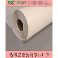 厂家供应 共聚脂低温环保 热熔胶膜 服装辅料 量大从优
