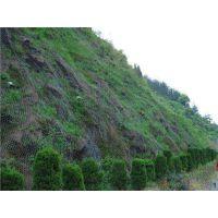河北专业供应绿化用勾花网、浸塑镀锌勾花网、操场围栏