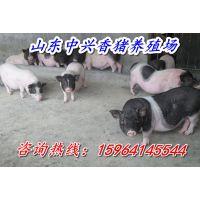 http://himg.china.cn/1/4_315_235122_600_400.jpg