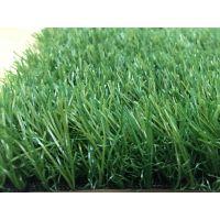 热点推荐 PP材质休闲人工草坪、绿化屋顶装饰类人造草坪(皮)仿真草坪