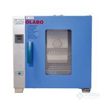 欧莱博电热鼓风干燥箱DHG-9960A外门带观察窗