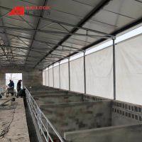 扬州蓬布-透光养殖卷帘-透气保暖卷帘
