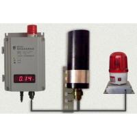 辐射监测报警装置(场所剂量仪)型号:JY-BY101-1 金洋万达牌