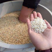 多功能碾米机 大型碾米机 家用碾米机 粮食脱皮碾米机