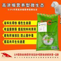 高浓缩营养型微生态丨羊饲料添加剂该怎么选