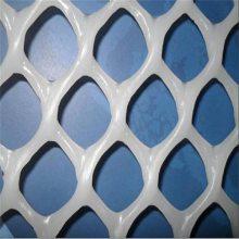 养殖塑料用网 纯原料用网 优质塑料平网