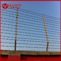 河北厂家专业定做各种规格防爬刺丝网 学校刺绳防护网 带刺围网