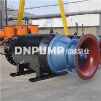 海水循环养殖耐腐蚀潜水轴流泵DN